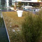 Gartenkunst mit Wasser